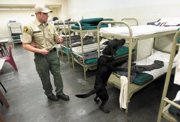 Les dortoirs en prison